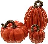 khevga decorazione autunnale zucche decorative in set (arancione)