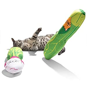 Cat Toys for your Cat or Kitten
