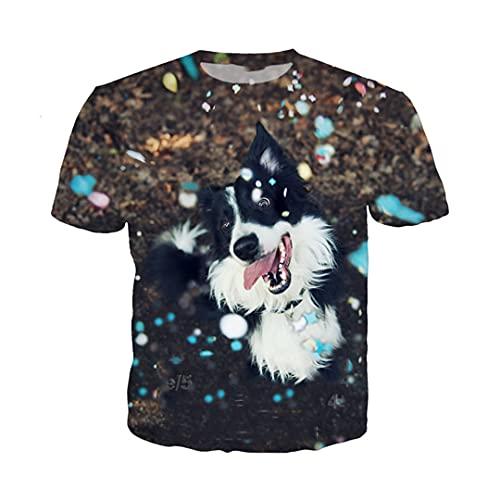 Border Collie Dog T Shirt Men Women Animal Sweatshirt 3D Print Short Sleeve Hip Hop Tops O Neck Pullover 1 Asia 4XL