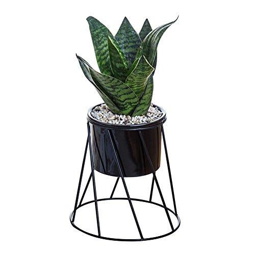 Bloempot hangende vaas & geometrische muur decoratie bloempot container - ideaal voor vetplanten, Air Plant, Mini cactus, Faux planten en meer, keramiek Zwarte wastafel + zwart frame.