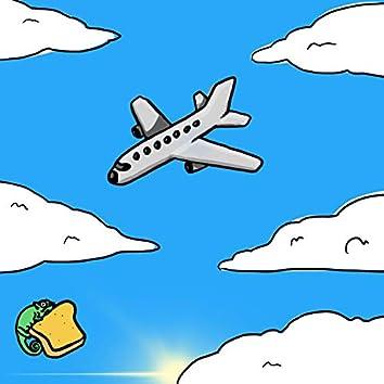 Flight (feat. Melodichameleon)