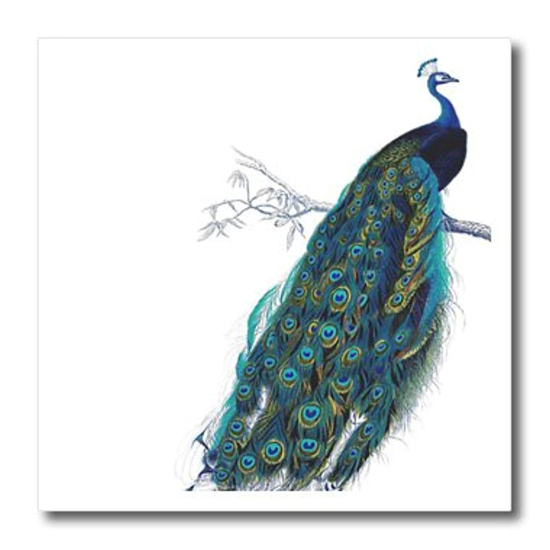 3dRose ht_113188_3 Vintage Peacock Art Blue and Green Bird on Branch Tail Feathers Iron on Heat Transfer, 10 by 10-Inch