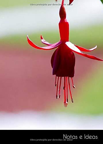 Notas e Ideas: Cuaderno / diario de bala pequeño flor botánico | tamaño A6, libreta punteada. Sostenible y neutral al clima.