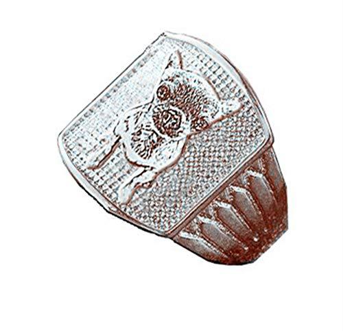 Collienght Personalisierte Name Ring benutzerdefinierte Ring Anweisung Ring Foto Ring graviertes Bild(Silber 21)