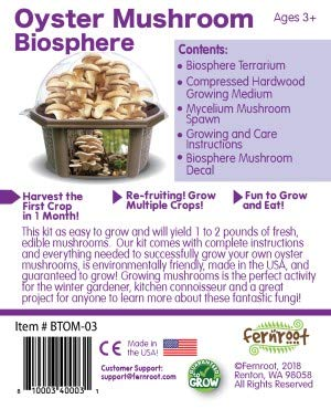 Fern Root Grow Your Own Oyster Mushrooms in Our Biosphere Terrarium - Kit is Easy to Grow and Will Yield 1 to 2 Pounds of Fresh, Edible Mushrooms - Includes to Grow Your Oyster Mushroom