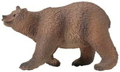 mejor servicio Safari  marrón Bear Bear Bear by Safari  compras en linea