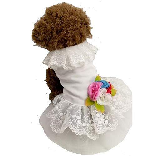 liangh Haustier Katze Anzug Gentleman Kleid,Katzen Hochzeit Prinzessin Kleider,Hund Weihnachten Neujahr Anzug,Welpe Kitty Schwalben Schwanz Kleidung,H-M
