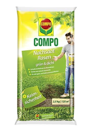 COMPO Nachsaat-Rasen grün und dicht, Rasenmischung mit schnell keimenden Rasensorten, 2,5 kg, 125m²