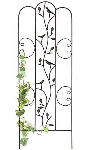 DanDiBo Rankhilfe Metall mit Vögel Blumengitter 110 cm Freistehend Rankgitter 1858 Steckzaun Kletterhilfe Zaun