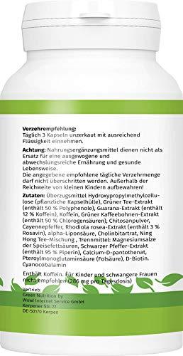 Green Nutrition – F-Burn – 90 Kapseln – 100% Natürlich – Guarana Extrakt – Grüner Kaffee – Grüner Tee – B6 & B12 Vitamine – geeignet für Frauen und Männer – 1er Pack - 3
