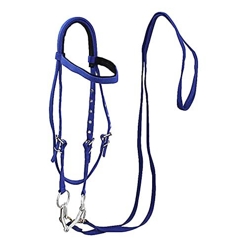 ARbuliry Set di Briglia per Cavalli in Nylon e Cotone con Bit in Metallo, Robusta Briglia per Cavalli Regolabile per l'addestramento Completo (Blu L)