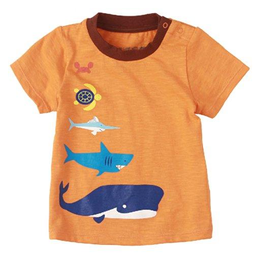 Sea World pur coton Infant Tee T-shirt pour bébé Orange 73 cm (6–12 m)