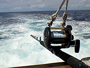 Yellowfin, Wahoo, Dorado, Oh My! Mag Bay- Part 4