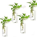 Vumdua 4 PCS Wall Hanging Planters, 9 Inch Glass Planters Rectangle Shape Glass Plant Containers,...