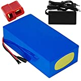 SGSG Paquete de batería de Litio de 48 V 20 Ah con BMS y Cargador...