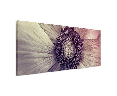 Sinus Art 120x40cm Panoramabild auf Leinwand Innere Blume Lila Makro-Bild