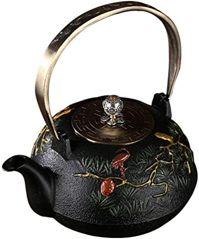DOITOOL Vintage Tea Pot with Infuser Cast Iron Tea Kettle Stovetop Teapot with Filter Pour Pitcher product image