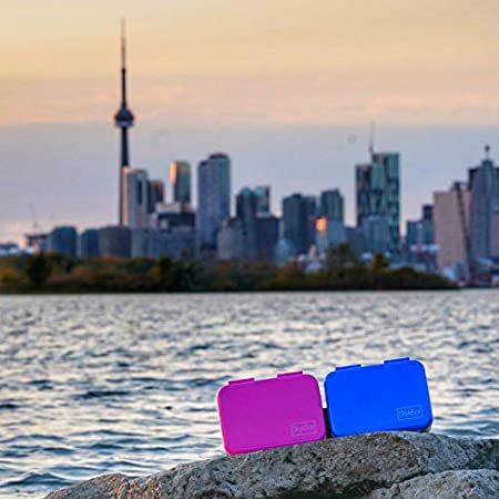 Fuchsia Pink Bento Box Adult Lunch Box Canada SkyeBox Stainless Steel Leakproof Bento Box BPA-Free and Food-Safe Materials Kids Lunch Box Designed in Toronto