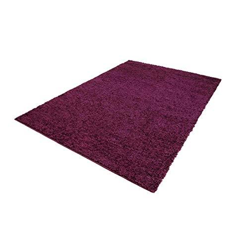 Carpet City ayshaggy Shaggy Teppich Hochflor Langflor Einfarbig Uni Lila Weich Flauschig Wohnzimmer, Größe: 100 x 200 cm, 100 cm x 200 cm