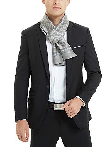 WANYING Seidenschal für Herren aus Kunstseiden Frühjahr Herbst Doppelseite Herrenschal Casual Business - Gepunktet Hellgrau