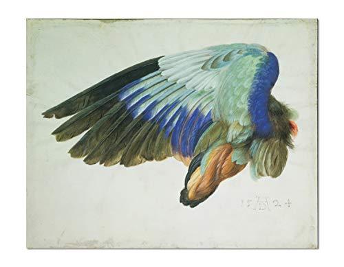 ART ALPHA - Kunstdruck - Albrecht Duerer - Fluegel eines Vogels Poster (138 x 110 cm)