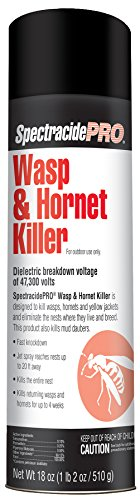 Spectracide 30110 SpectracidePRO Wasp & Hornet Killer (Aerosol) (HG-30110) (18 oz), White Can