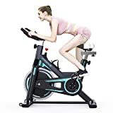 2WD Exercise Bike, Indoor Cycling Bike, Health & Fitness Exercise Cycling Bike, Belt Drive Indoor Spin Bike, Stationary Bike LCD Display for Indoor Cardio Workout Bike Training (black-10kg)
