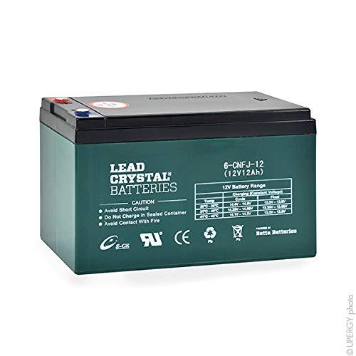 Lead Crystal - Akku Bleikristall 6-CNFJ-12 12V 13Ah M5-F