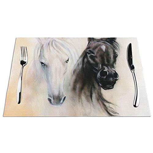 JSV Paard Geweven Placemat Anti-lip Isolatie Tafelmatten Makkelijk Te Reinigen, Plaatjes Voor Eettafel Set Van 6 (12X18 In)