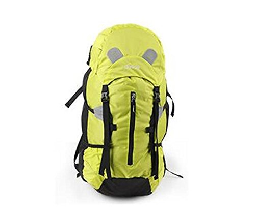 sac à dos randonnée Outdoor sacs package d'alpinisme randonnée hommes sac d'épaule de sac à dos et les femmes quelques modèles 36L Sacs à dos de randonnée ( Couleur : Vert , taille : 36L )