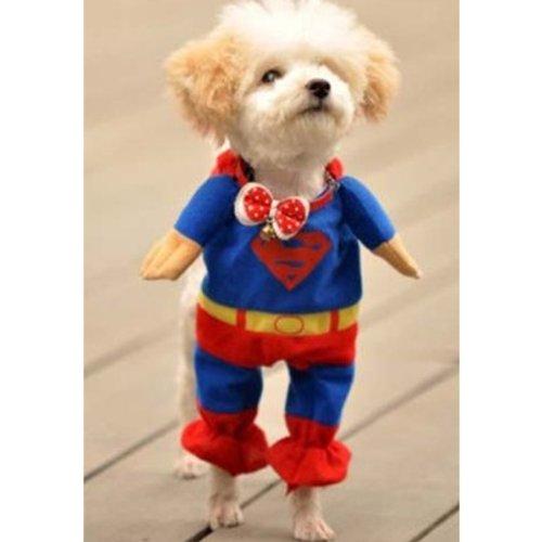 【全5サイズ】 ドッグウェア トレーナー 犬服 コスチューム ワンちゃんがスーパーマンに変身 (Lサイズ(首回り29~35cm 身長約32cm))