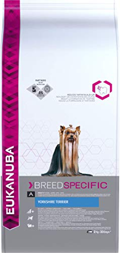 Eukanuba Breed Specific - Alimento Completo specifico per Yorkshire Terrier Adulti, Crocchette al Pollo - 2 Kg