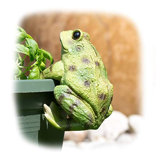 ProdBuy Home Plant Pot Hanging Garden Ornament (Green Frog)