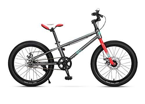 MOSHANG Bicicleta de montaña para niños 18/20 Pulgadas, niños en Bicicleta Todoterreno (Color : Gray, Size : 20 Inches)