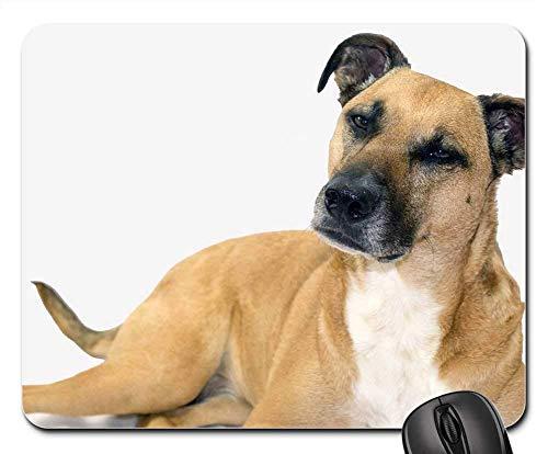 Mauspad Black Mouth Cur Süßer Hund Rettungshund Gaming Mausmatte Anti Rutsch Gummiunterseite Hochwertiges Mausunterlage Multifunktionales Gaming Mousepad Für Laptop/Pc, 25X30 Cm