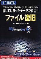 DataSalvagerPRO