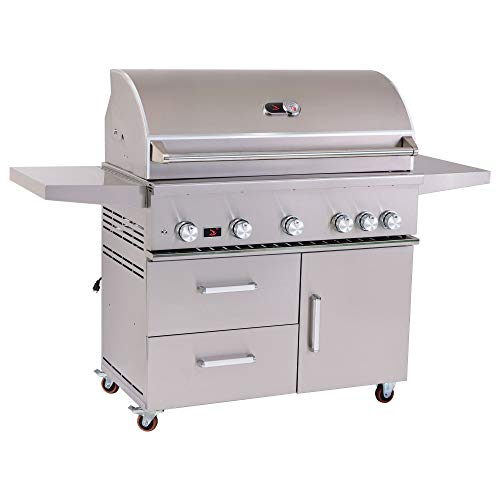 Bonfire 42-inch 5-Burner Propane Gas Grill Freestanding for Outdoor BBQ with Rear Infrared Burner and Rotisserie Kit, 304 Stainless Steel, CBF500CDC-LP Grills Propane