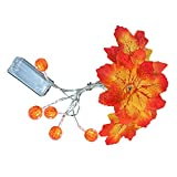 RYGHEWE Halloween Pumpkin String Lights,1 Pack 5 FT Maple Pumpkin Led Light Artificial Fall Maple Leaves Garland Indoor Outdoor Home Decor Thanksgiving Party Decoration Supplies (Multicolor)
