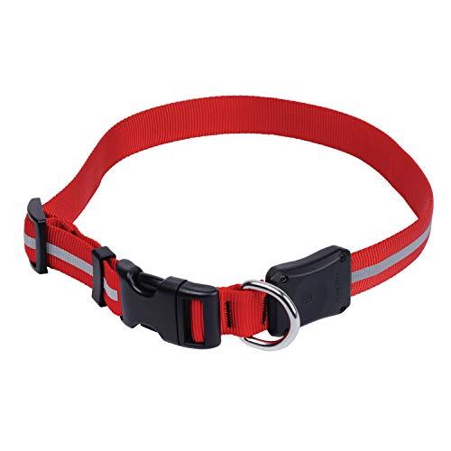 Nite Ize NND2M-10-R3 Nite Dawg LED Light Up Dog Collar, Medium, Red