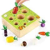 O-Kinee Juego de Clasificación Rompecabezas, Montessori 1 Año, Rompecabezas de Madera Juguete para niños, Juegos Educativos de Granja Infantiles Ejercicio, Juguetes Educativos para niños (A)