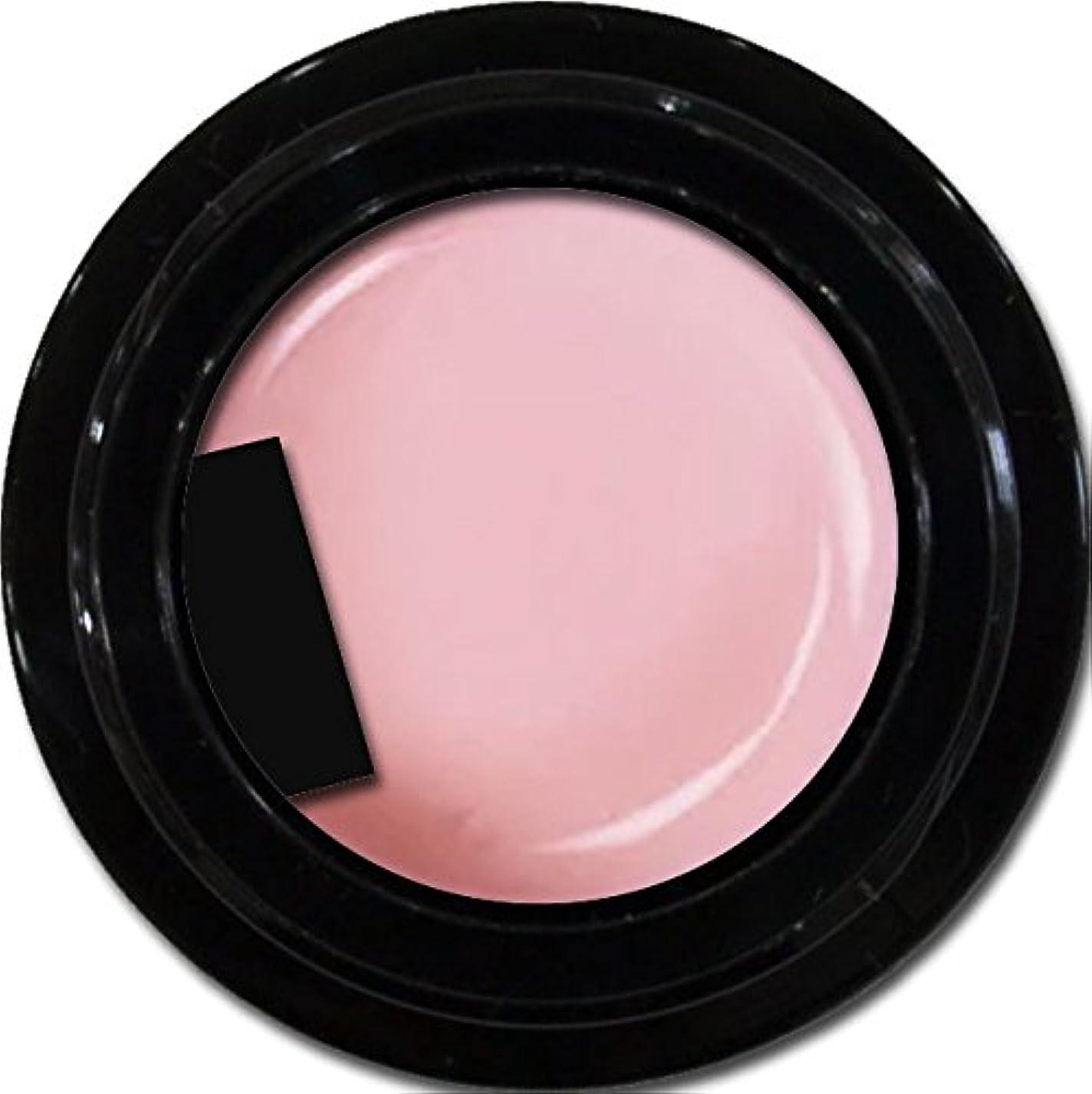 薄暗い食品労苦カラージェル enchant gel color gel S502 Robe Sheer 3g/ エンチャントジェル カラージェル S502ローブシアー 3グラム