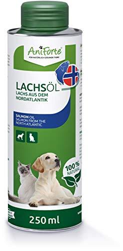 AniForte Lachsöl für Hunde & Katzen 250 ml - Kaltgepresst mit Omega 3 und Omega 6 Fettsäuren, Premium Fischöl für Welpen, Adult, Senior, Ohne Zusätze, Barf Ergänzung, Recyclebare Verpackung ohne BPA