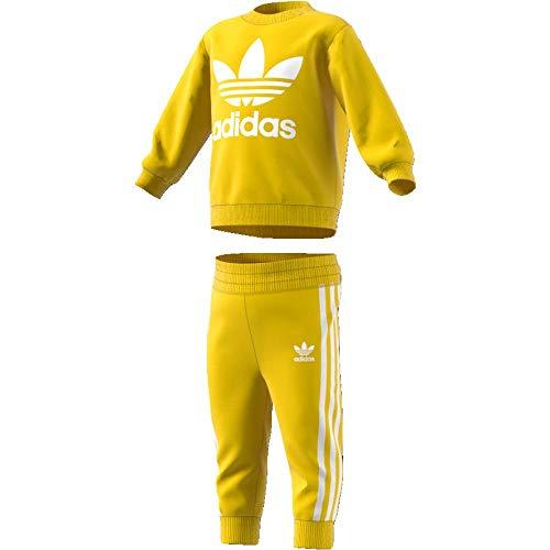 Adidas Trefoil Trainingspak voor kinderen