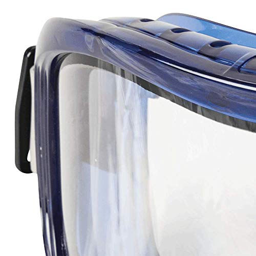 Sellstrom Safety Goggles Odyssey II Anti Fog, Scratch Resistant, Latex Free, Dual Panel Clear Lens, Blue Frame, S80201