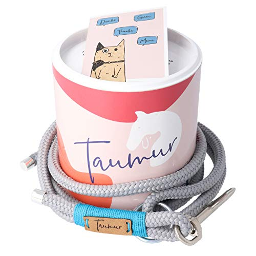 Taumur: farbenfrohe City Leine - grau/türkis - Leine für mittelgroße Hunde aus robustem PPM