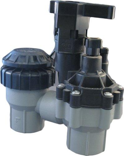 Rain Bird 100-ASVF 1' Inlet Residential Anti-Siphon Sprinkler Valve w/Flow...
