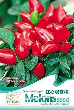 B053: 2018 Semillas Originales Paquete del Chile Picante Pimienta Dulce - (Color B053)