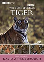 Wildlife [DVD]