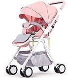 LYP Triciclo Bebé Trolley Trike 2 en 1 Cochecito de bebé Peso Ligero Carros de bebé Recién Nacidos Sentado PROMPAS DE PLATACIÓN para NIÑOS PORTEPORTE Viaje (Color : #3)