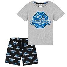 Jurassic World Pijamas Niños, Pijama Niño Verano, Pijama Dinosaurio Niño, Ropa de Algodón para Chicos y Adolescentes 4-14 Años (Gris/Negro, 9-10 años)